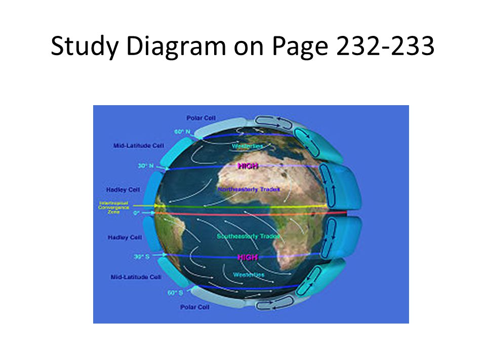 Study Diagram on Page 232-233