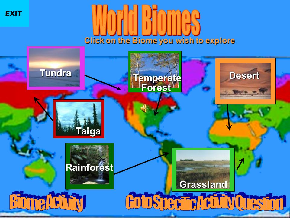What is a Biome? Scientists have developed the term Biome to describe areas on the earth with similar climate, plants, and animals. The plants and ani