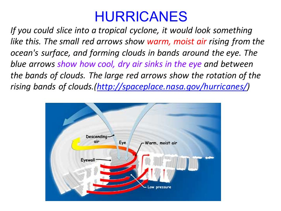 HURRICANES If you could slice into a tropical cyclone, it would look something like this. The small red arrows show warm, moist air rising from the oc