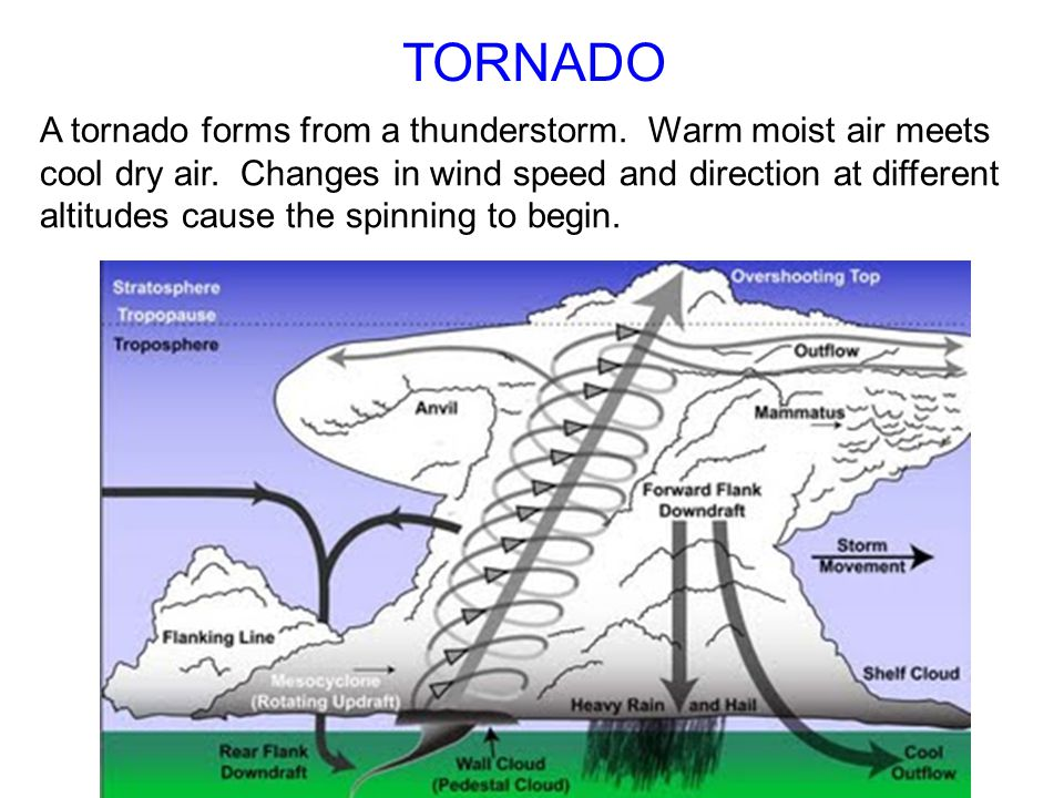TORNADO A tornado forms from a thunderstorm. Warm moist air meets cool dry air. Changes in wind speed and direction at different altitudes cause the s