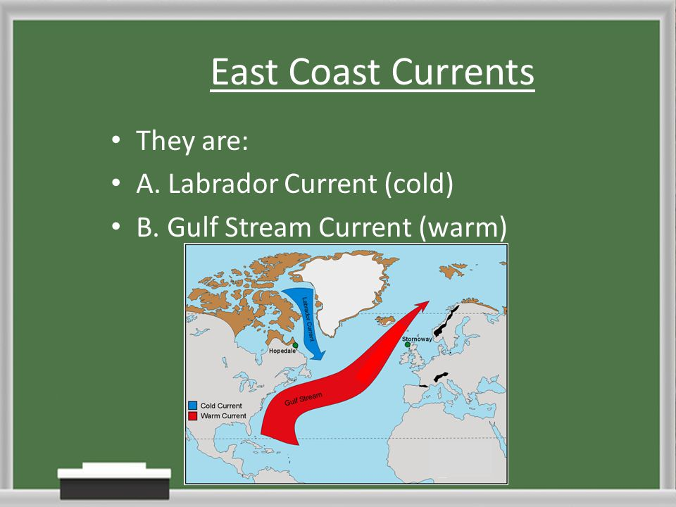 East Coast Currents They are: A. Labrador Current (cold) B. Gulf Stream Current (warm)