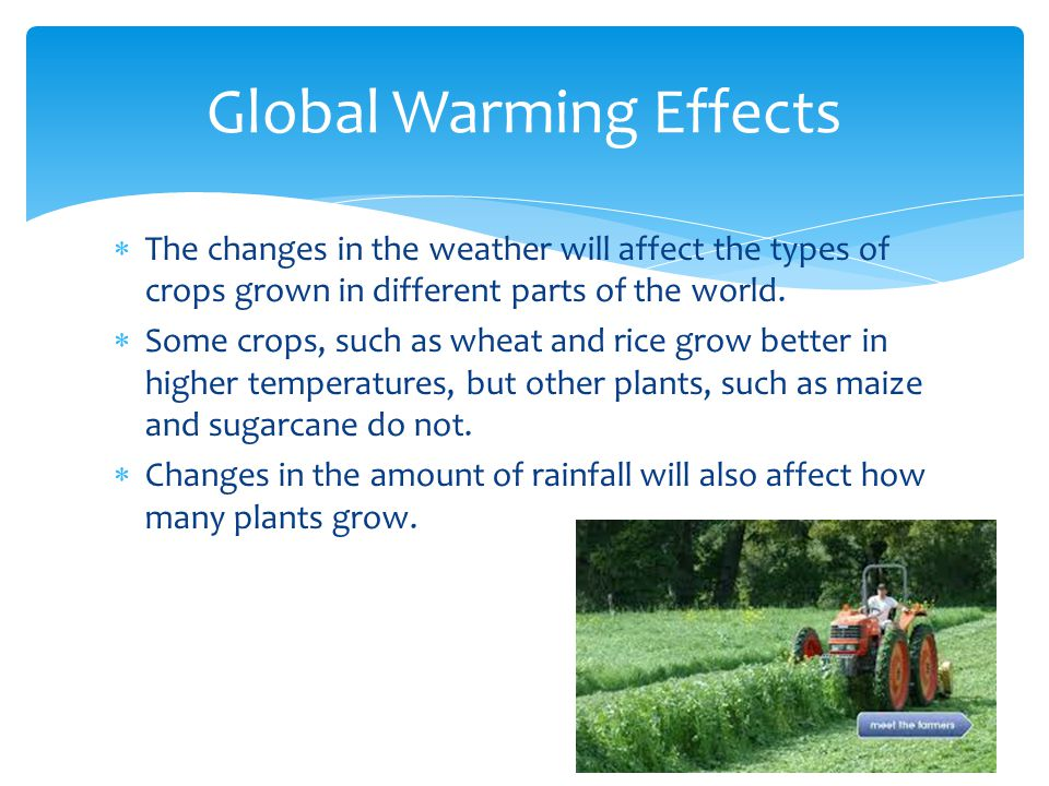 The changes in the weather will affect the types of crops grown in different parts of the world. Some crops, such as wheat and rice grow better in hig