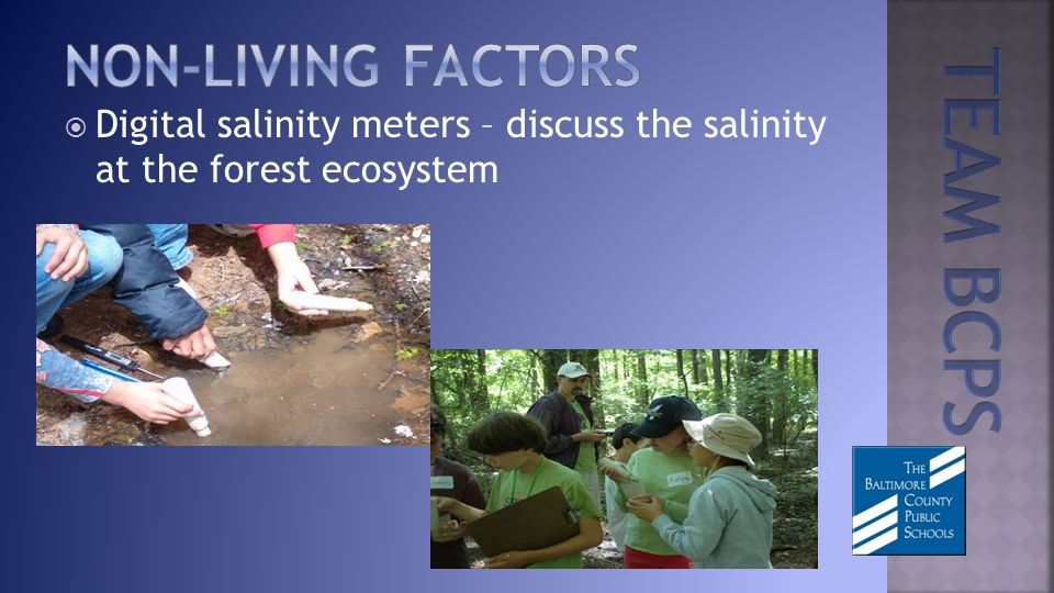 Digital salinity meters – discuss the salinity at the forest ecosystem