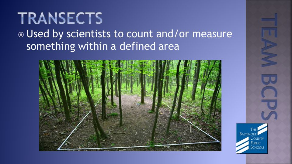 Used by scientists to count and/or measure something within a defined area