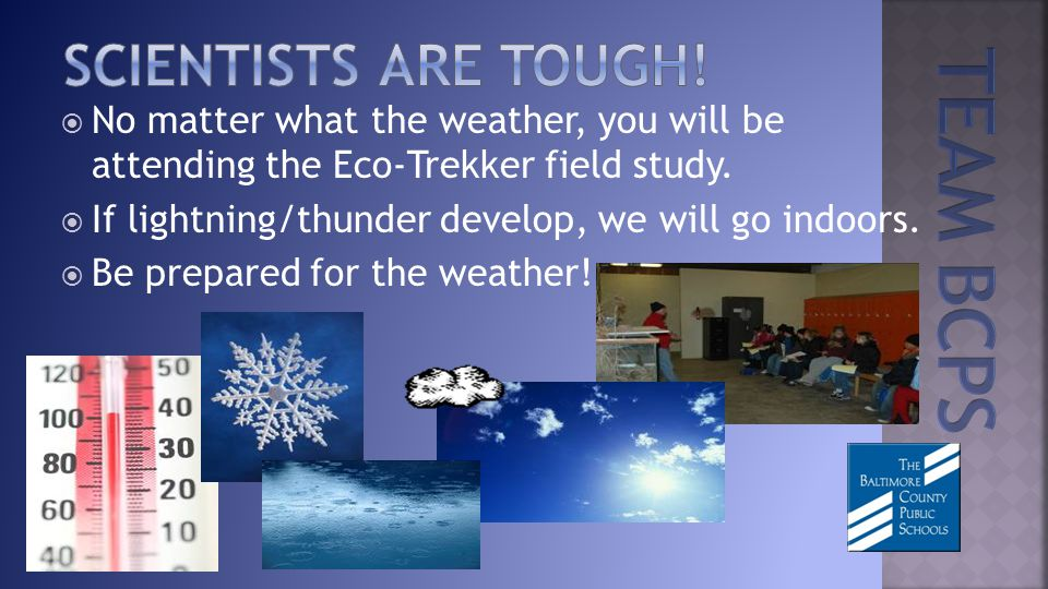 No matter what the weather, you will be attending the Eco-Trekker field study.