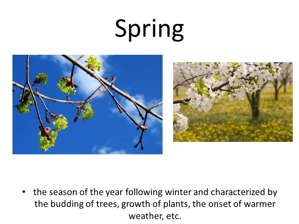 Spring the season of the year following winter and characterized by the budding of trees, growth of plants, the onset of warmer weather, etc.