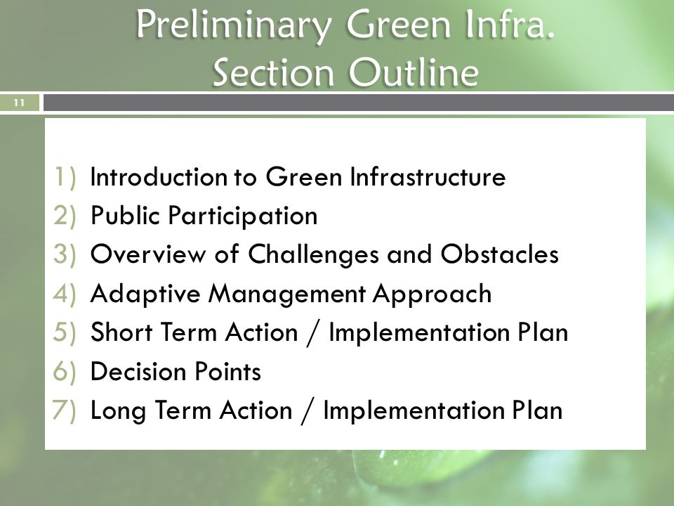 Preliminary Green Infra. Section Outline 1)Introduction to Green Infrastructure 2)Public Participation 3)Overview of Challenges and Obstacles 4)Adapti