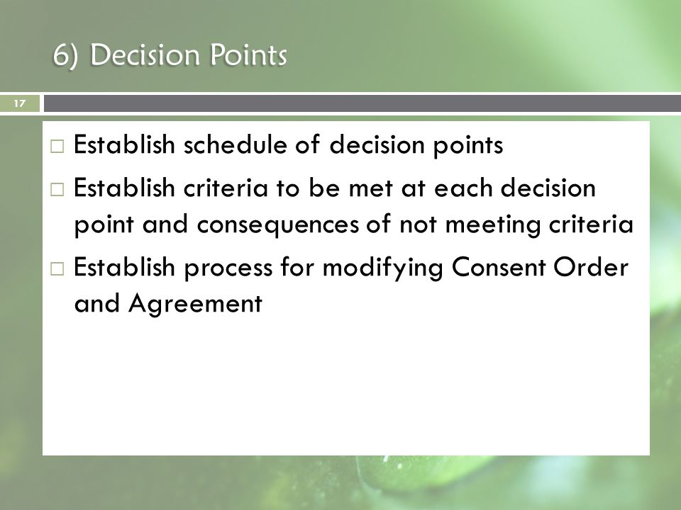 6) Decision Points Establish schedule of decision points Establish criteria to be met at each decision point and consequences of not meeting criteria