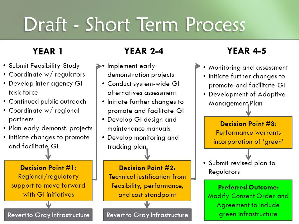 Draft - Short Term Process YEAR 1 YEAR 2-4 YEAR 4-5 Decision Point #1: Regional/regulatory support to move forward with GI initiatives Submit Feasibil
