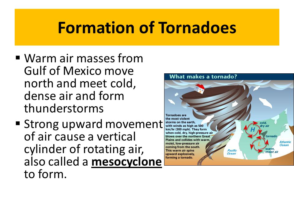 Formation of Tornadoes Warm air masses from Gulf of Mexico move north and meet cold, dense air and form thunderstorms Strong upward movement of air ca