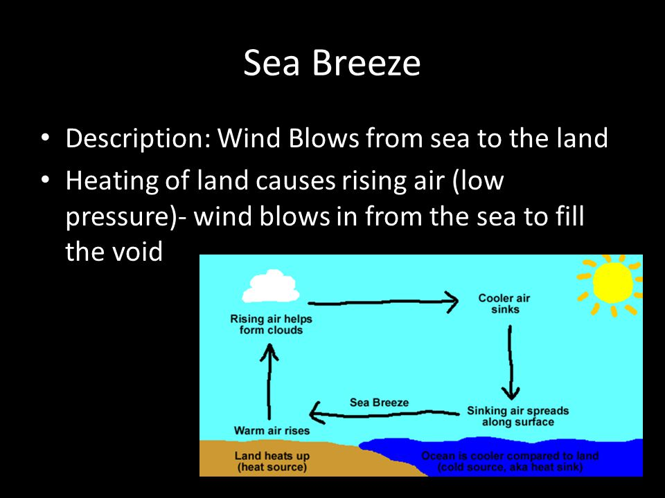 Sea Breeze Description: Wind Blows from sea to the land Heating of land causes rising air (low pressure)- wind blows in from the sea to fill the void