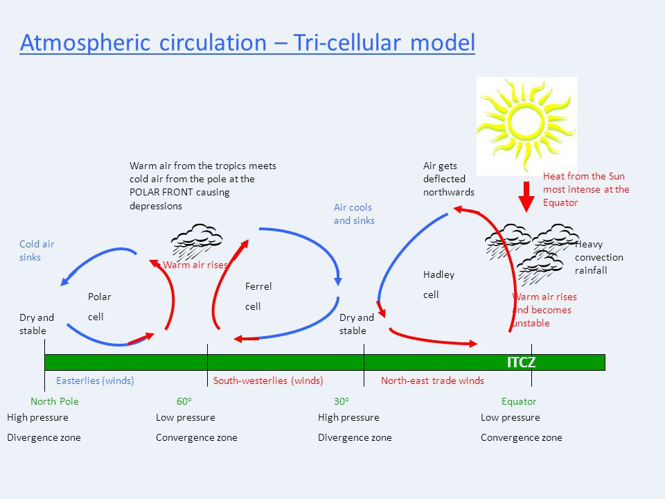 Atmospheric circulation – Tri-cellular model North PoleEquator Hadley cell 30 o High pressure Divergence zone Low pressure Convergence zone 60 o Low p