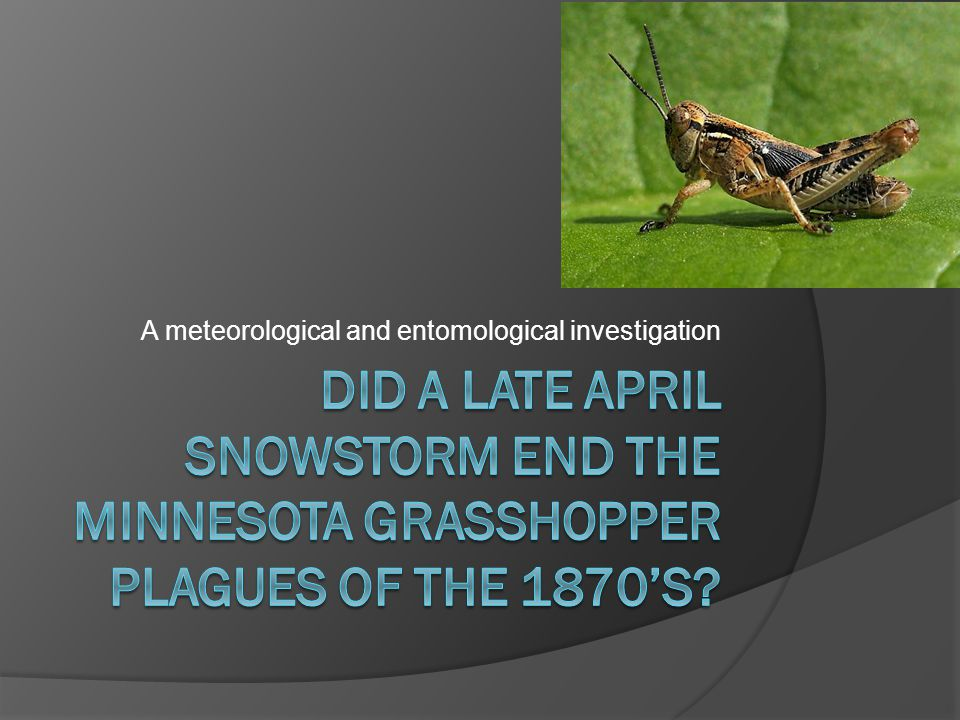 A meteorological and entomological investigation