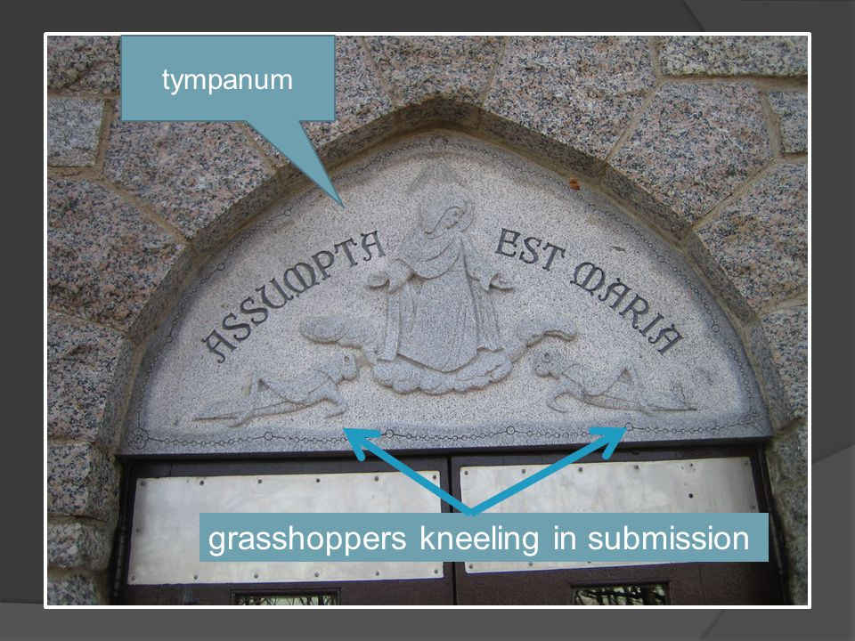 tympanum grasshoppers kneeling in submission
