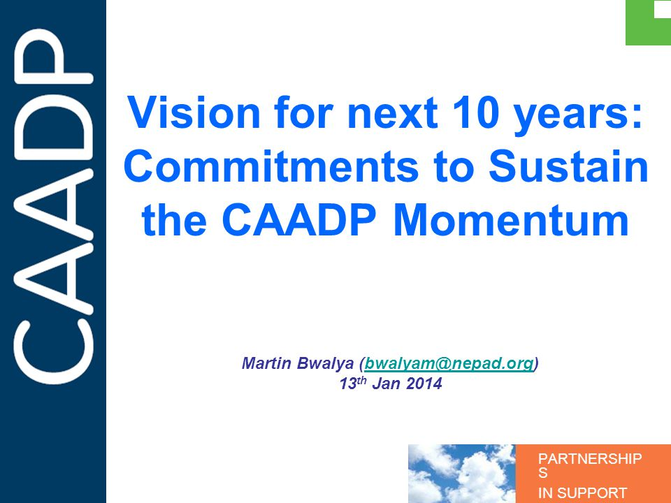 PARTNERSHIP S IN SUPPORT OF CAADP Vision for next 10 years: Commitments to Sustain the CAADP Momentum Martin Bwalya (bwalyam@nepad.org)bwalyam@nepad.o