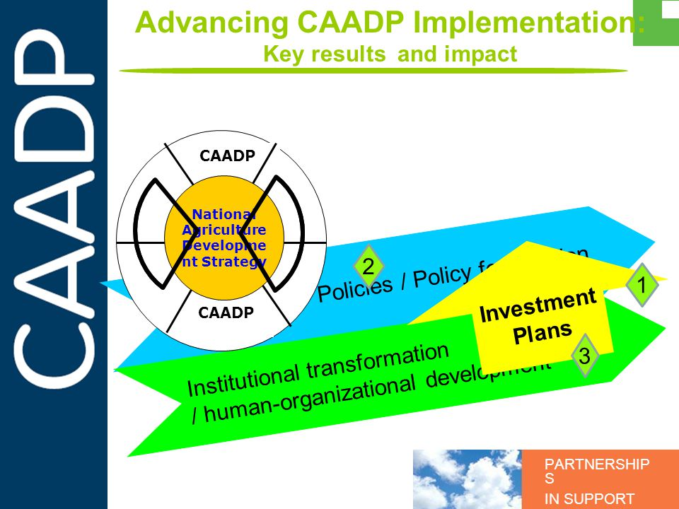 PARTNERSHIP S IN SUPPORT OF CAADP Advancing CAADP Implementation: Key results and impact Policies / Policy formulation Institutional transformation /