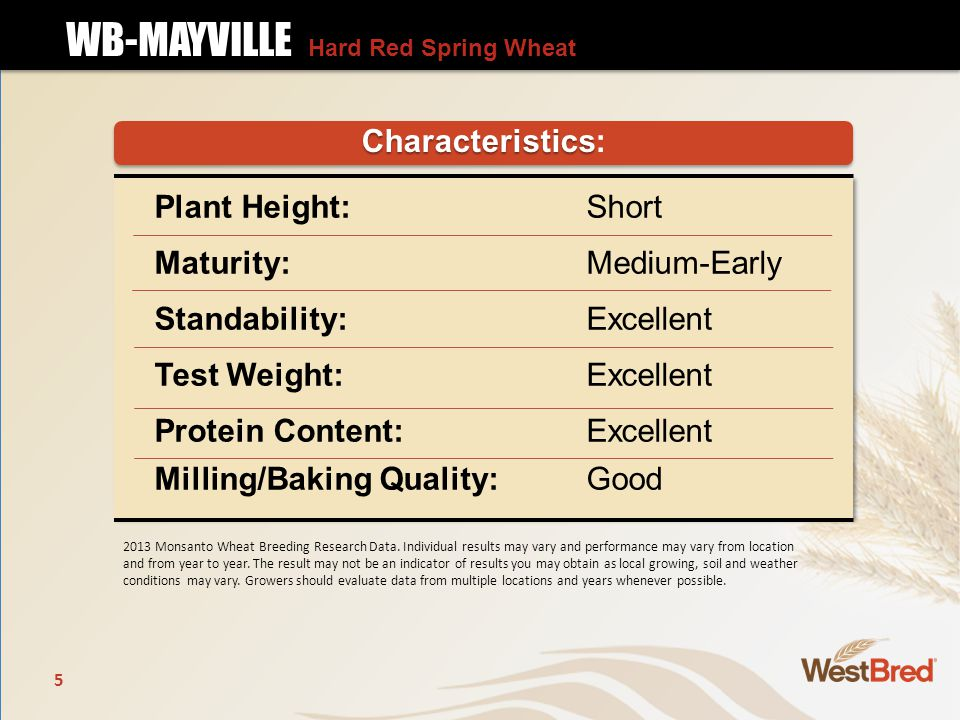 Plant Height: Short Maturity: Medium-Early Standability: Excellent Test Weight: Excellent Protein Content: Excellent Milling/Baking Quality:Good Characteristics Characteristics: 2013 Monsanto Wheat Breeding Research Data.