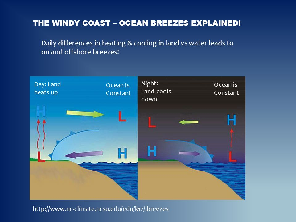 THE WINDY COAST – OCEAN BREEZES EXPLAINED! http://www.nc-climate.ncsu.edu/edu/k12/.breezes Daily differences in heating & cooling in land vs water lea