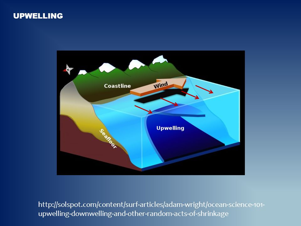 http://solspot.com/content/surf-articles/adam-wright/ocean-science-101- upwelling-downwelling-and-other-random-acts-of-shrinkage
