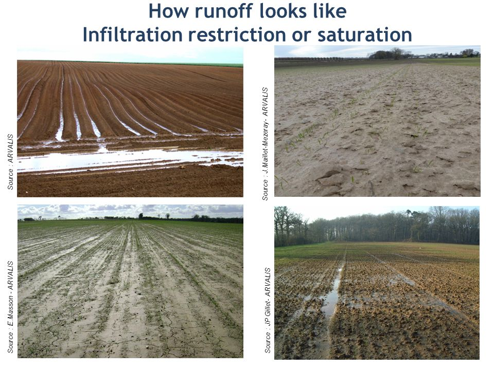 How runoff looks like Infiltration restriction or saturation Source : E.Masson - ARVALISSource : JP Gillet- ARVALIS Source : ARVALIS Source : J.Maillet-Mezeray- ARVALIS