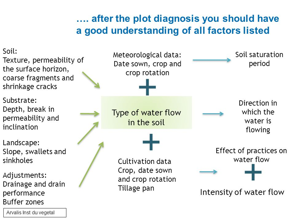 Soil: Texture, permeability of the surface horizon, coarse fragments and shrinkage cracks Substrate: Depth, break in permeability and inclination Landscape: Slope, swallets and sinkholes Adjustments: Drainage and drain performance Buffer zones Meteorological data: Date sown, crop and crop rotation Cultivation data Crop, date sown and crop rotation Tillage pan Type of water flow in the soil Direction in which the water is flowing Effect of practices on water flow + + Soil saturation period + Intensity of water flow ….