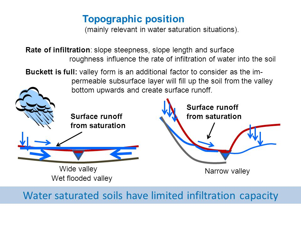 Topographic position (mainly relevant in water saturation situations).