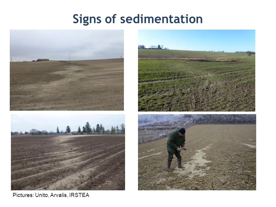 Signs of sedimentation Pictures: Unito, Arvalis, IRSTEA