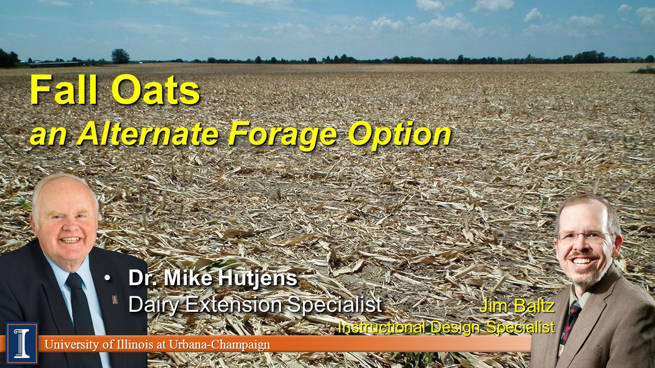 University of Illinois at Urbana-Champaign Learn Objective The growing and feeding of a fall cereal grain can be a viable forage resourceThe growing and feeding of a fall cereal grain can be a viable forage resource With drought concerns in 2012,.