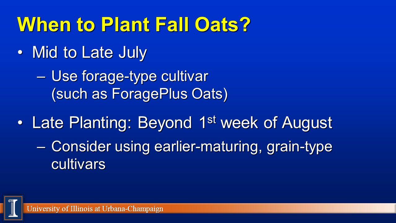 University of Illinois at Urbana-Champaign Nutrient Comparison (NRC, 2001) %DM%CP%ADF%TDN %DM%CP%ADF%TDN Corn Silage35 8.828.168.8 Oatlage3512.938.956.8 Haylage3920.037.056.6 Oat Hay92 9.136.455.9 Hay8820.231.258.9