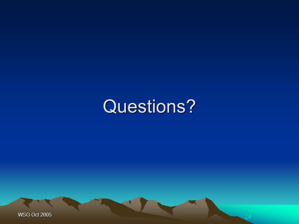 24 WSG Oct 2005 Questions?