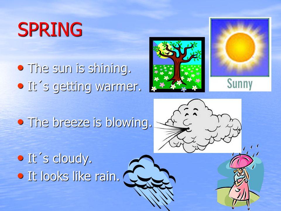 SPRING The sun is shining. The sun is shining. It´s getting warmer.