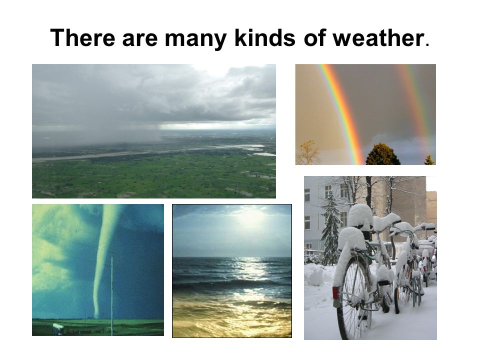 There are many kinds of weather.