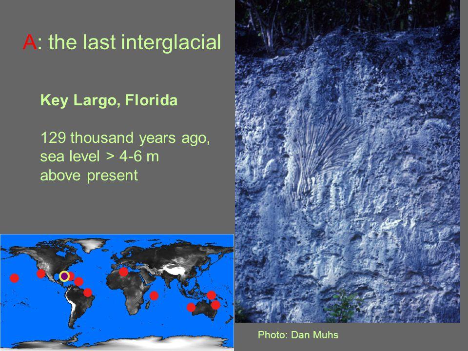 Key Largo, Florida 129 thousand years ago, sea level > 4-6 m above present Photo: Dan Muhs A: the last interglacial