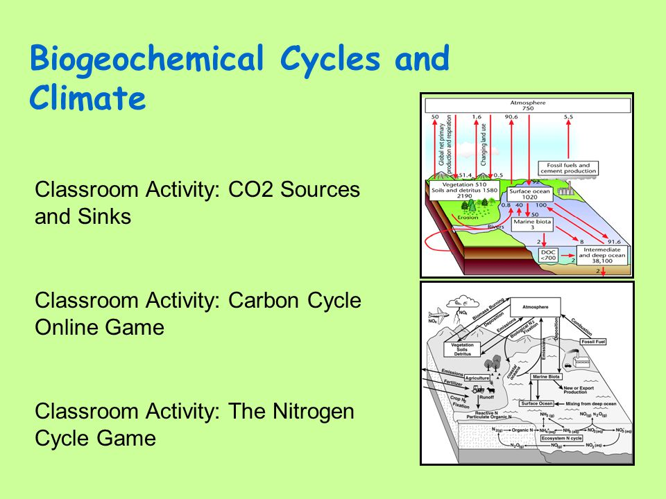 Biogeochemical Cycles and Climate Classroom Activity: Carbon Cycle Online Game Classroom Activity: CO2 Sources and Sinks Classroom Activity: The Nitro