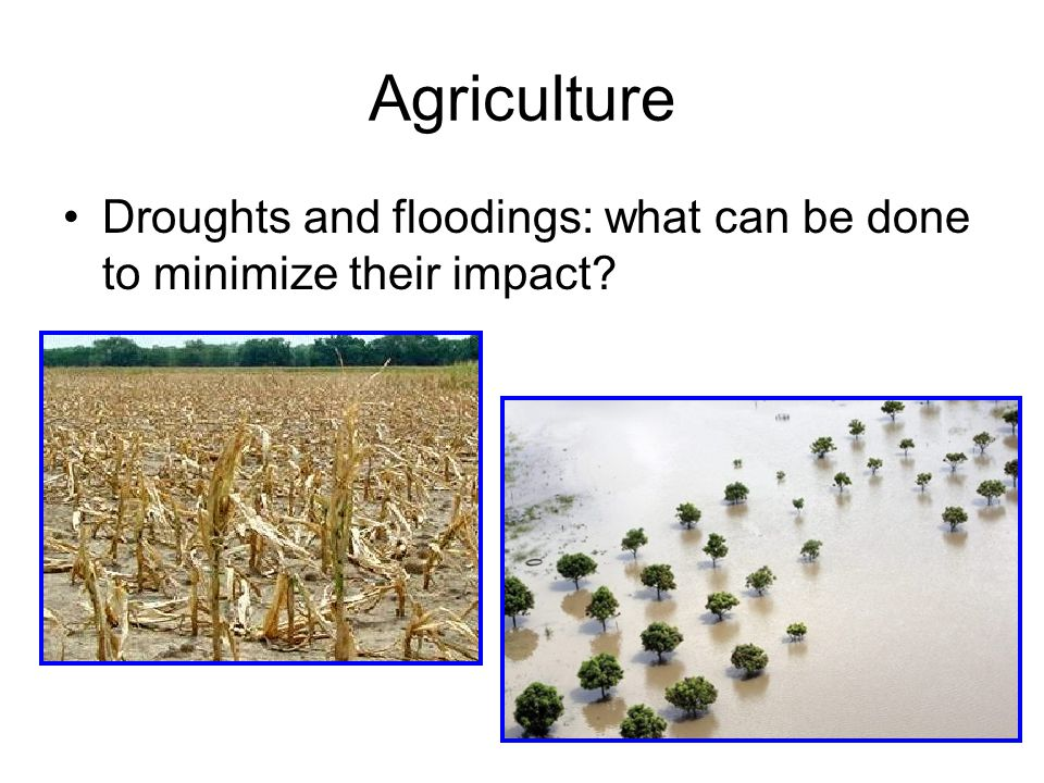Agriculture Droughts and floodings: what can be done to minimize their impact?