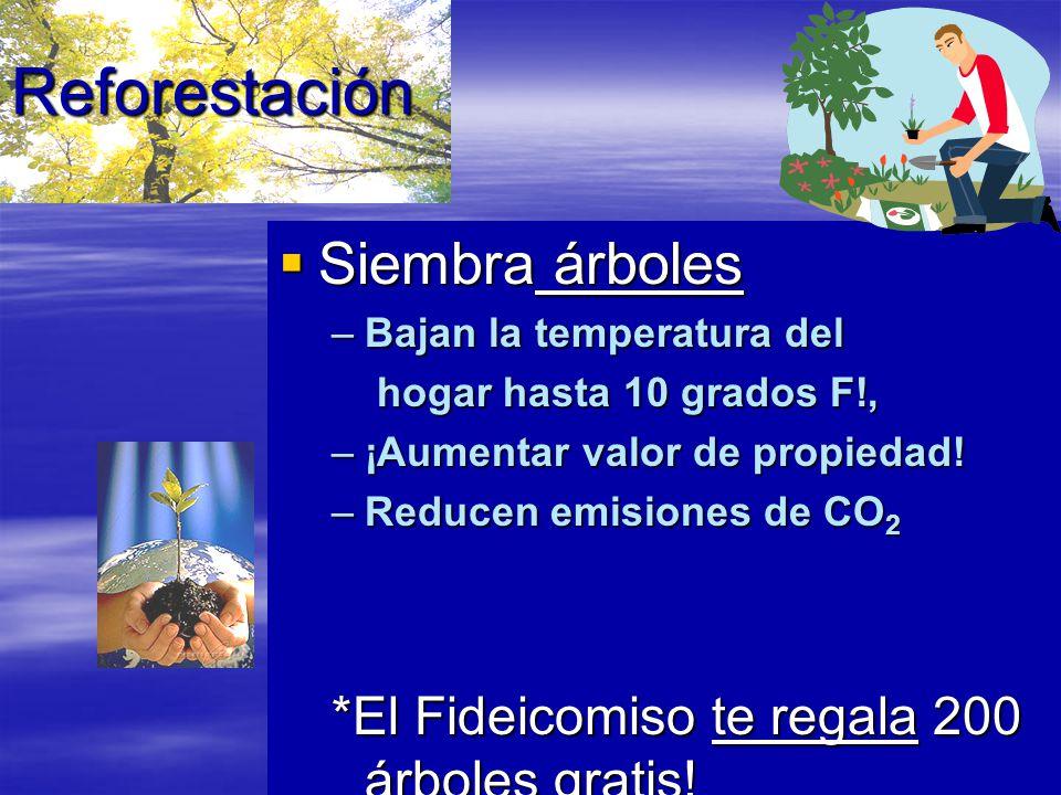 Reforestación Siembra árboles Siembra árboles –Bajan la temperatura del hogar hasta 10 grados F!, hogar hasta 10 grados F!, –¡Aumentar valor de propiedad.