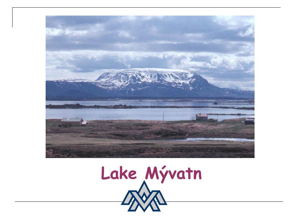 Population Population: 311 000 Language: Icelandic Ancestors: Scandinavian, Celtics Settlement: in year 874 More than half of the population lives in the greater Reykjavík area C.a.