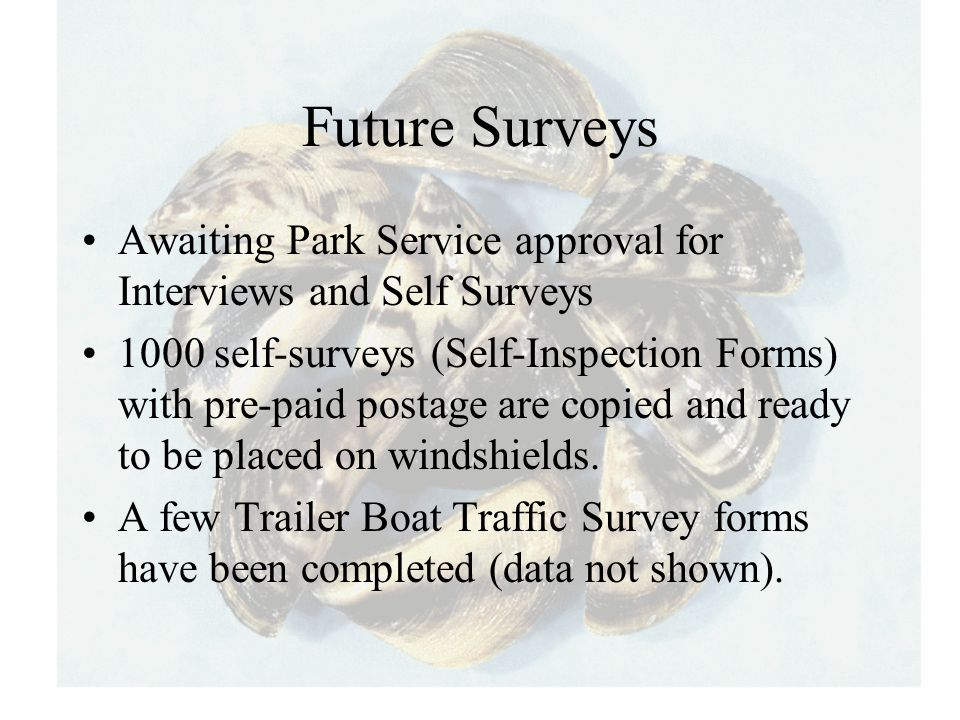 Future Surveys Awaiting Park Service approval for Interviews and Self Surveys 1000 self-surveys (Self-Inspection Forms) with pre-paid postage are copi