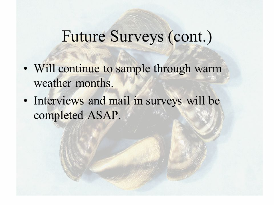 Future Surveys (cont.) Will continue to sample through warm weather months. Interviews and mail in surveys will be completed ASAP.