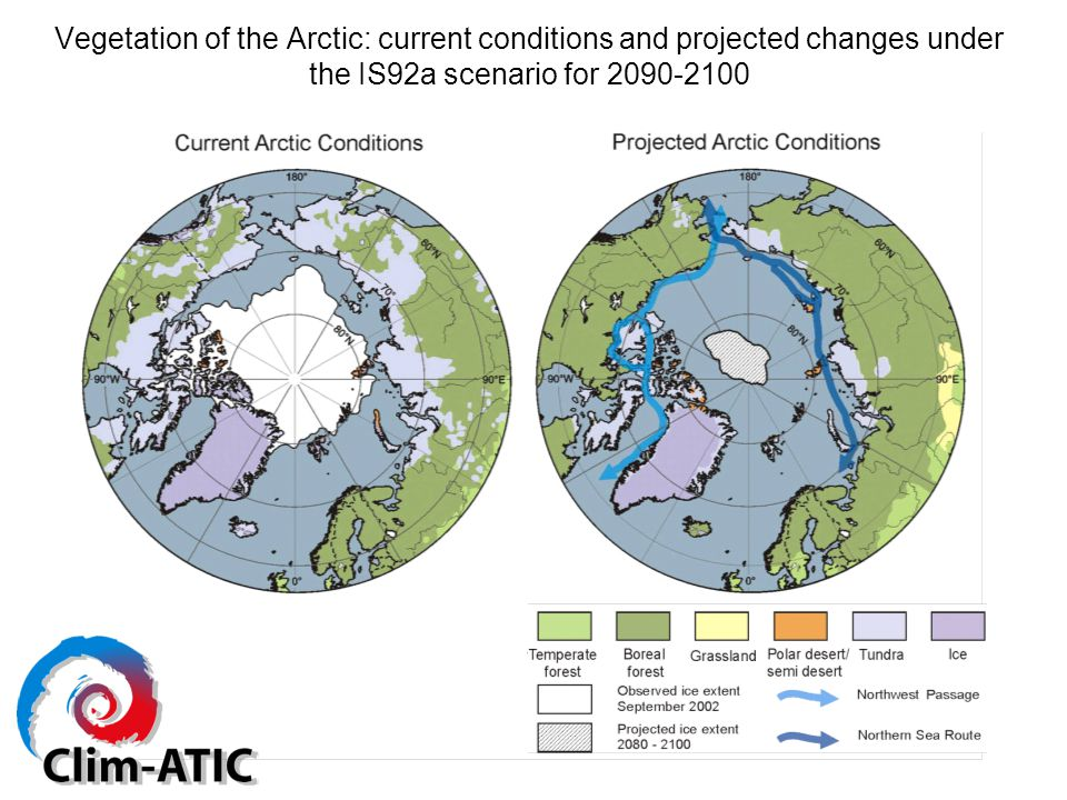 Vegetation of the Arctic: current conditions and projected changes under the IS92a scenario for 2090-2100