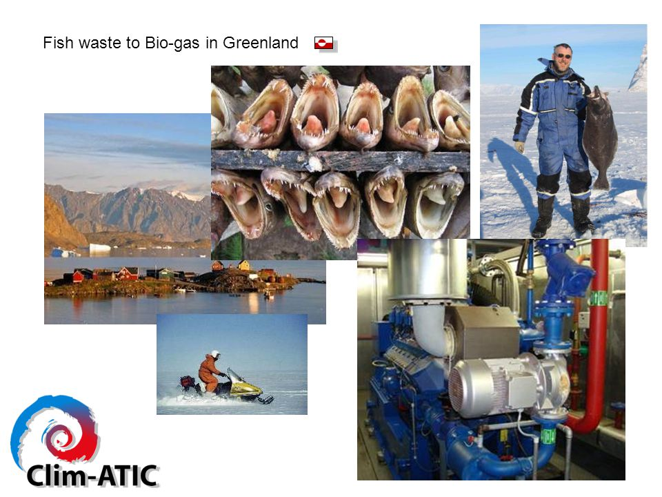 Fish waste to Bio-gas in Greenland