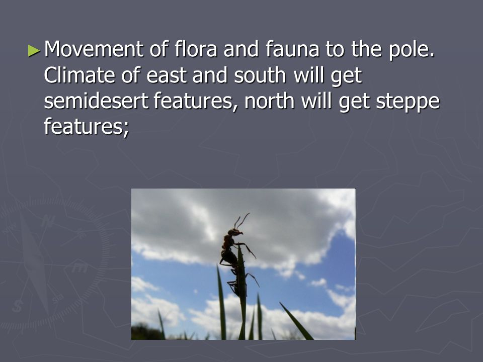 Movement of flora and fauna to the pole.