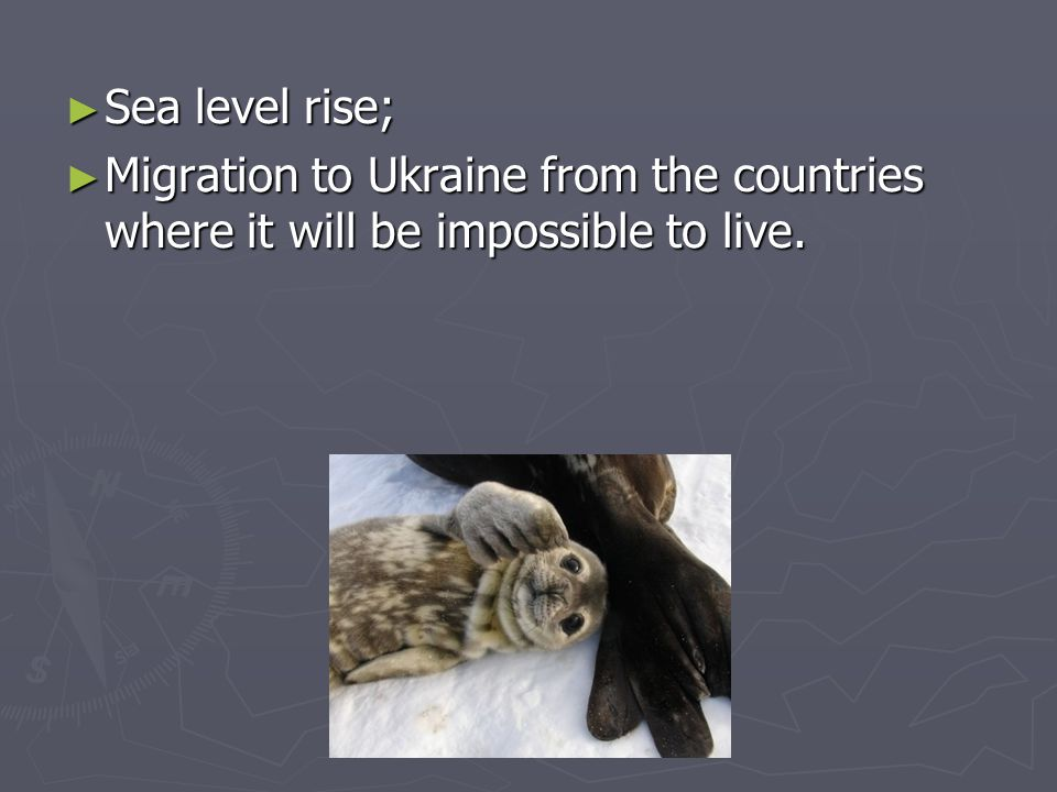 Sea level rise; Sea level rise; Migration to Ukraine from the countries where it will be impossible to live.