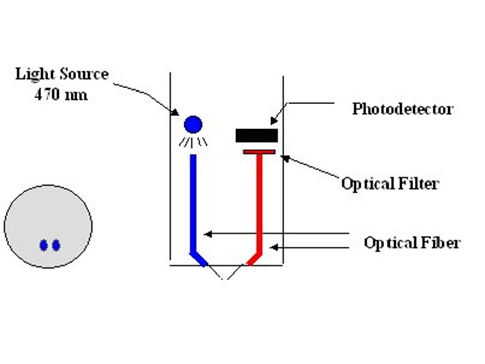 Some Issues (or Opportunities?) DO response time DO solubility function of barometric pressure Chl/Phyco – fluorescence issues CDOM – many… ISEs – calibration frequency and drift Other sensors – photosensitive LCs – potential for light dose sensors.