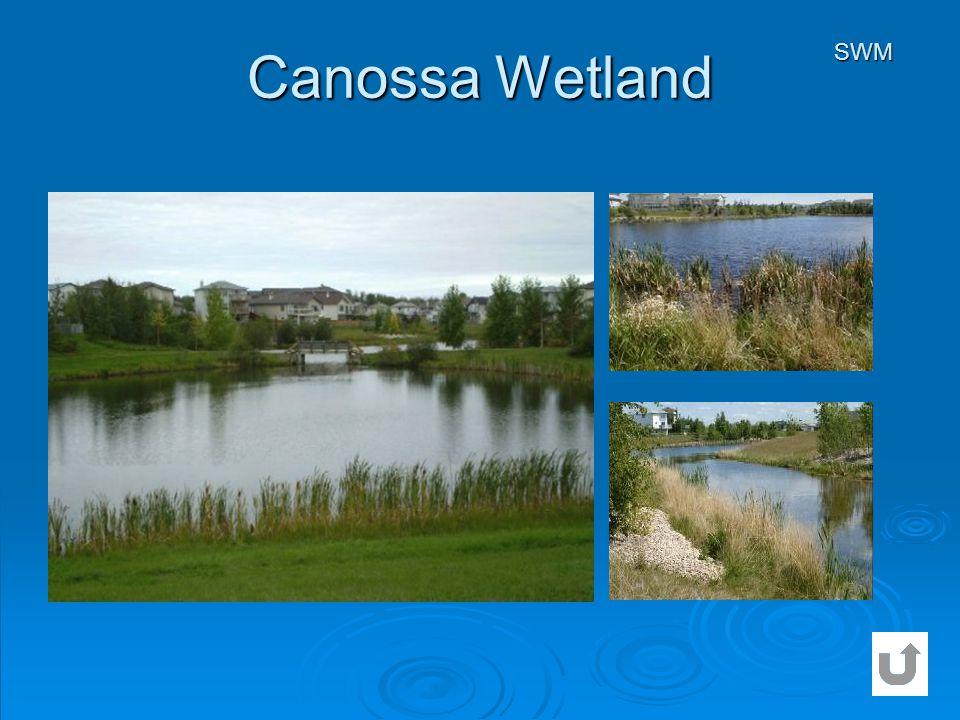 Canossa Wetland SWM