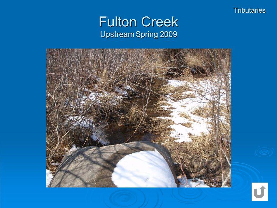 Fulton Creek Upstream Spring 2009 Tributaries
