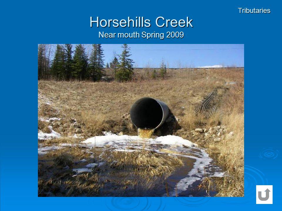 Horsehills Creek Near mouth Spring 2009 Tributaries