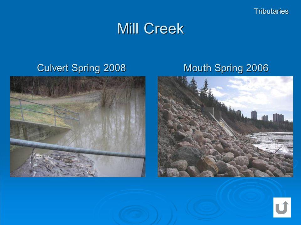 Mill Creek Tributaries Culvert Spring 2008 Mouth Spring 2006