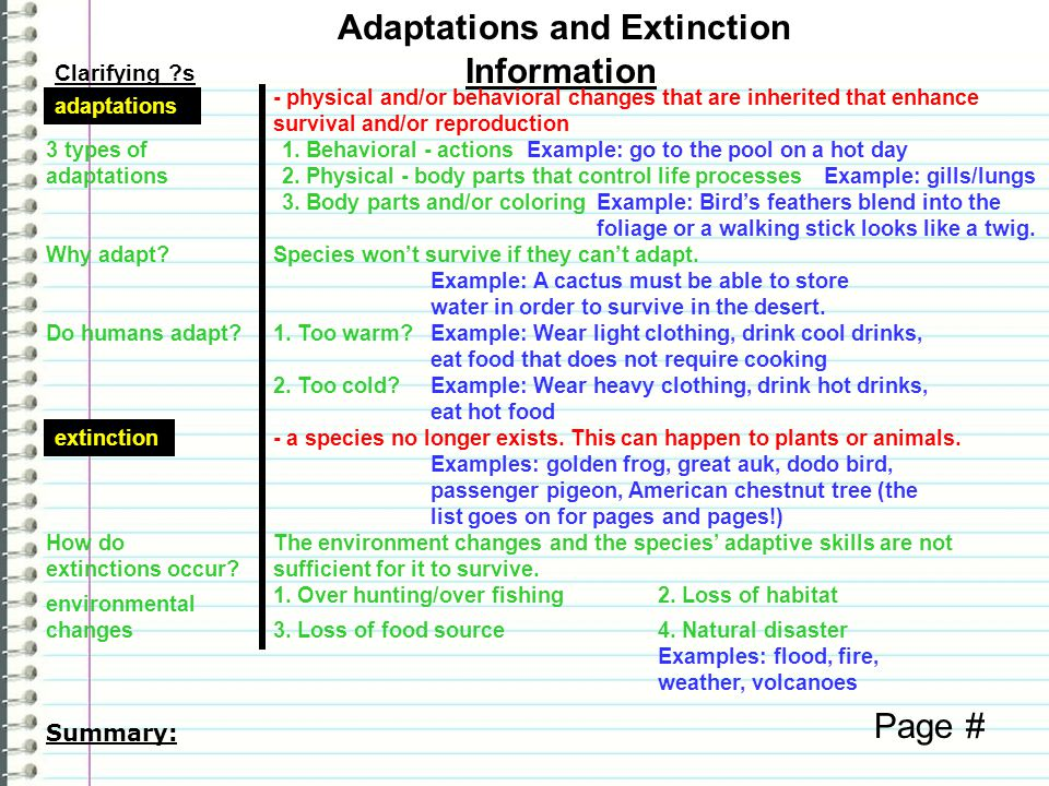 Clarifying ?s Information Page # Summary: Adaptations and Extinction adaptations - physical and/or behavioral changes that are inherited that enhance survival and/or reproduction 3 types of adaptations 1.