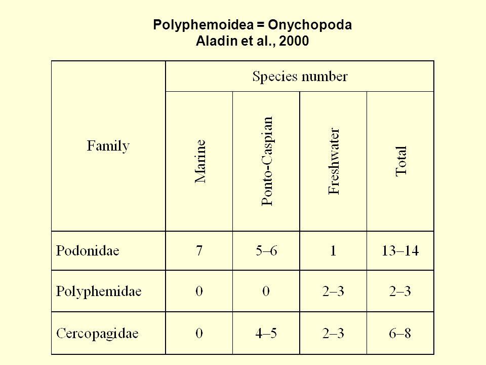 Polyphemoidea = Onychopoda Aladin et al., 2000